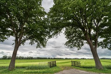 Noord Holland van Peter Korevaar