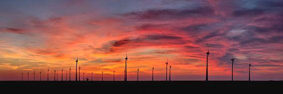 Windturbines en oude windmolen bij de Eemshaven