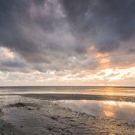 Cape Tribulation von Anneke Hooijer