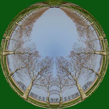Rondje bomen, groen. van Greet ten Have-Bloem