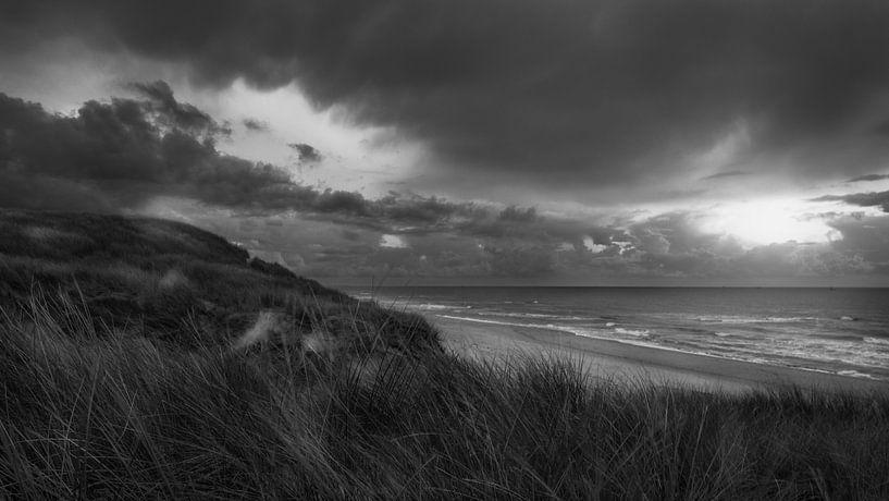 Buien in de duinen van Klaas Fidom