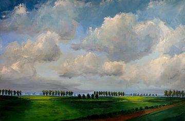Polderlandschaft Beveland Licht und Schatten von wim van de wege