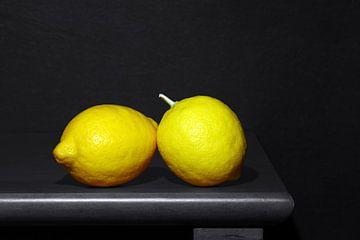 Zitronenduo von Gerhard Albicker