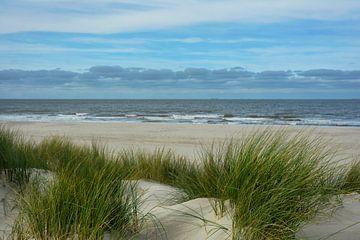 Nordsee Holland von Joachim G. Pinkawa