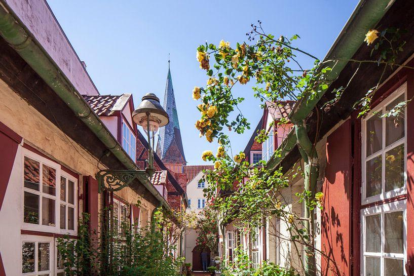 Von-Höveln-Gang, Altstadt, Lübeck, Schleswig-Holstein von Torsten Krüger
