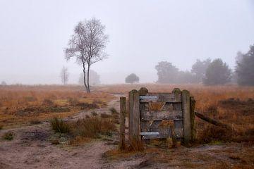 Paysage de landes hivernales sur Ad Jekel