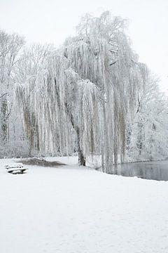 Winters landschap sur