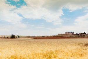La Mancha II