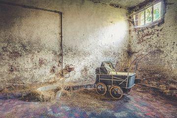 Kinderwagen in stal van