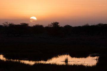 Zonsondergang in Etosha NP van Jeroen Kleverwal