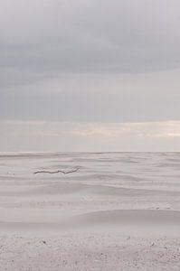 Stok op strand Schiermonnikoog