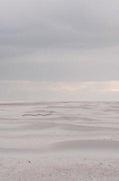 Stok op strand Schiermonnikoog van Margreet Frowijn