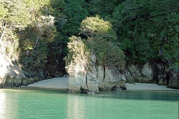 Roche d'éléphant dans le parc national Abel Tasman en Nouvelle-Zélande sur Aagje de Jong