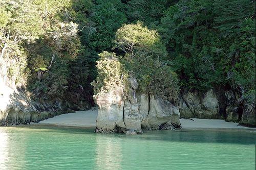 Olifantenrots in het Abel Tasman Nationaal Park in Nieuw Zeeland van