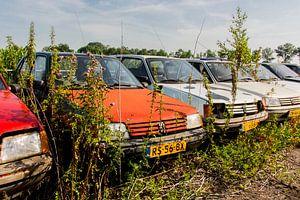 oude Peugeot van Elly Olsman