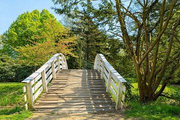 Nederlandse houten boogbrug in park tijdens lente van Ben Schonewille