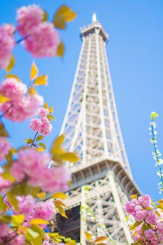 Lente in Parijs van