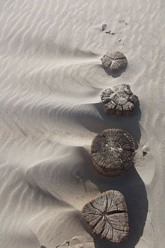 Het Zand, The Sand, der Sand von Yvonne de Waal Malefijt