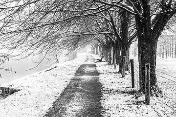 Sneeuw en mist bij het Kromme Rijnpad ter hoogte van de kersenboomgaard bij de Koningslaan, Utrecht von Arthur Puls Photography