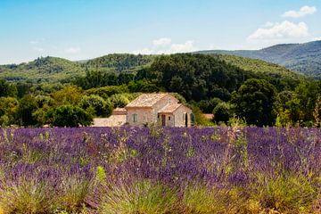 Provence von Claudia Moeckel