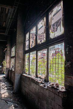 Gebroken ramen in verlaten fabriek van Servaas Hiel