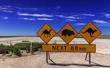 Straßenschilder am Beginn der Nullarbor Road, einer Straße durch die Leere des südlichen Australiens von Coos Photography