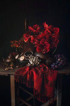 Amaryllis von Josette Alkema