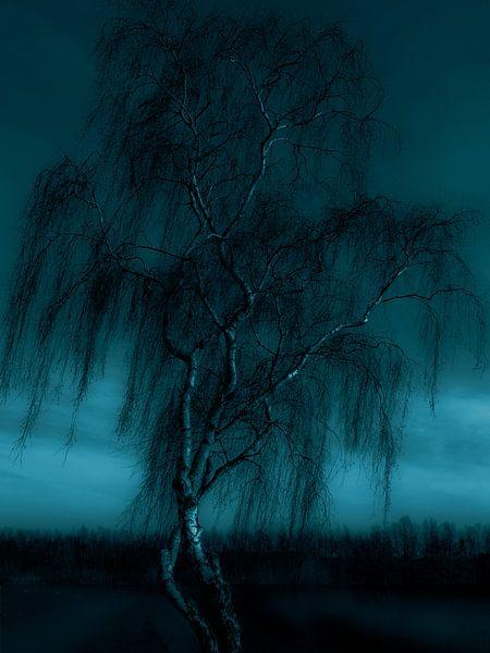 Dansende Bomen van Jacq Christiaan