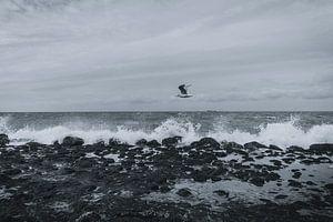 Temps orageux sur la plage sur Stedom Fotografie