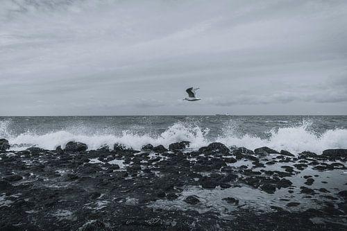 Stormachtig weer aan het strand van Koop je Canvas