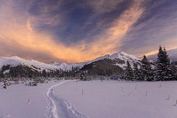 Ochtendgloed boven besneeuwde Alpen van Jonathan Vandevoorde