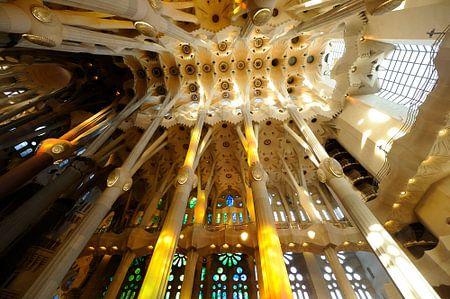De Sagrada Familia in Barcelona (3)