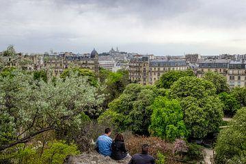 Uitzicht op Parijs van Johan Vanbockryck