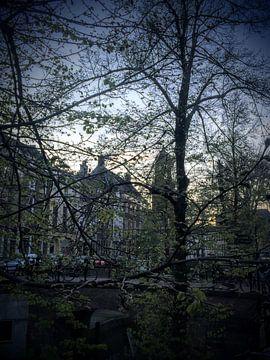 Dom Utrecht avond lente gracht (met bomen in bloei) van Ralph Bom