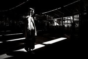 Aus dem Schatten