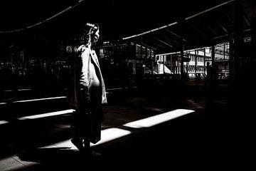 Aus dem Schatten von Marco Bollaart