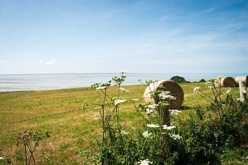 Het landschap langs de kust van Granville van