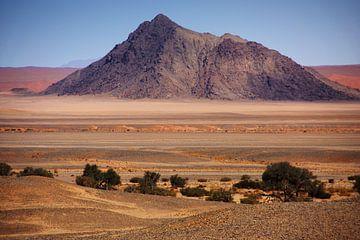 NAMIBIA ... Naukluftberge van Meleah Fotografie