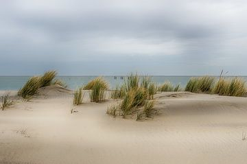 Une plage en Zélande sur Mark Bolijn