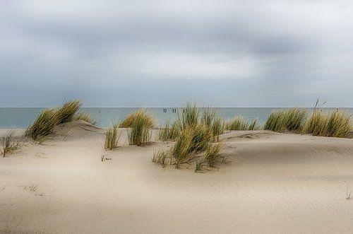 Strand in Zeeland van Mark Bolijn