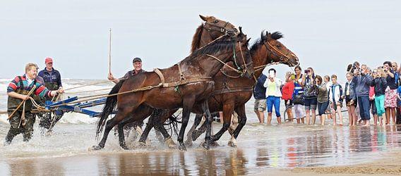 paarden aan het werk voor de Amelandse reddingsboot.