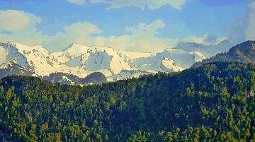 Wald Berge Schnee von Dirk van der Ven