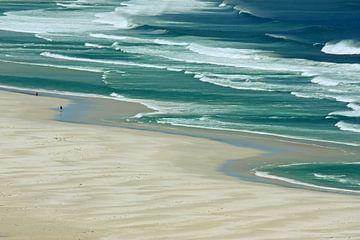 southafrica ... de strandloper sur