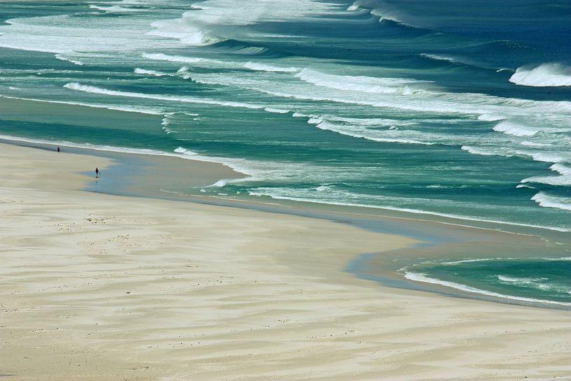 southafrica ... de strandloper sur Meleah Fotografie
