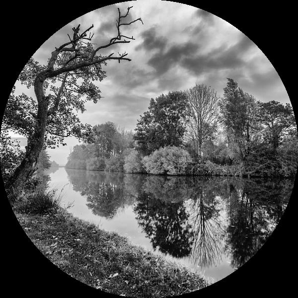Bomen langs de waterkant met reflectie in zwart-wit van R Smallenbroek