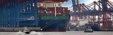 Terminal à conteneurs dans le port de Hambourg sur Jonas Weinitschke