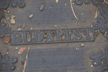 budapest von Aad van der linden