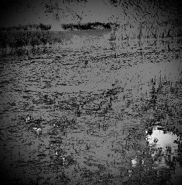 Het abstracte meer van Sidney de Graaf