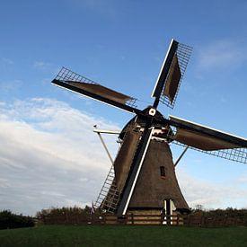 De Phenix (landschap) van Sander de Jong
