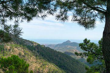 Uitzichtfoto onderweg naar Ronda, Andalusië, Spanje von Lars Bruin